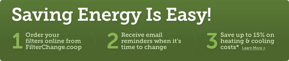 Saving Energy Is Easy!
