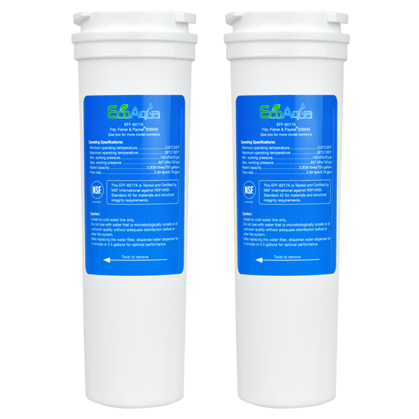 EcoAqua Replacement for Fisher & Paykel 836848 Filter, 2-Pack
